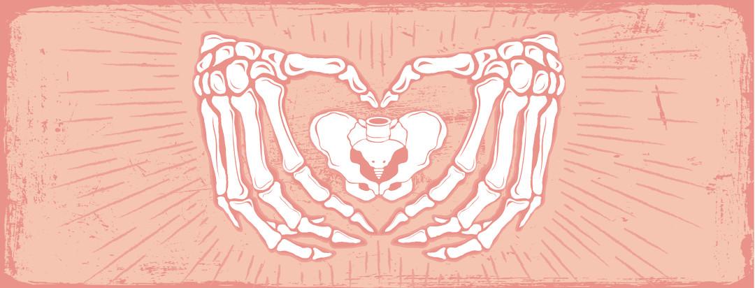 bones of hands forming a heart around the pelvis