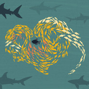 school of fish forming a heart shape, protecting the lone fish in the center from predators of the ocean